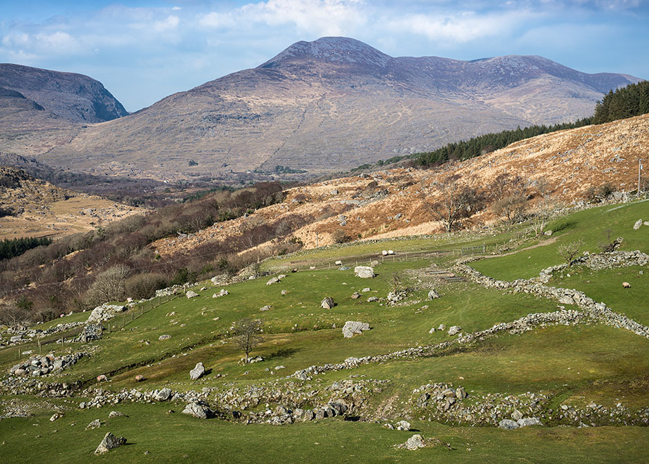 /product//sheep-pastures-ring-of-kerry-3/