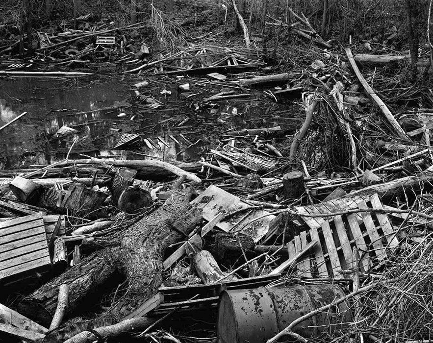 /product//debris-jam-chouteau-island-illinois/