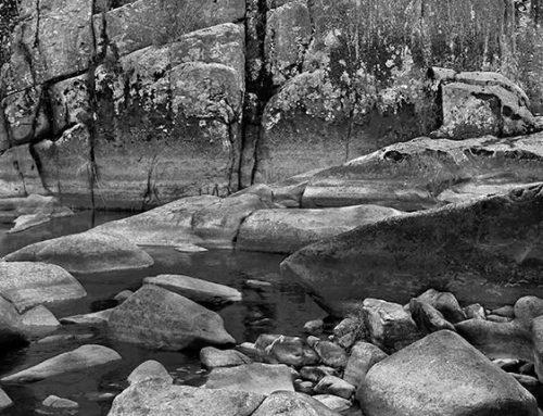 St. Francis River 4