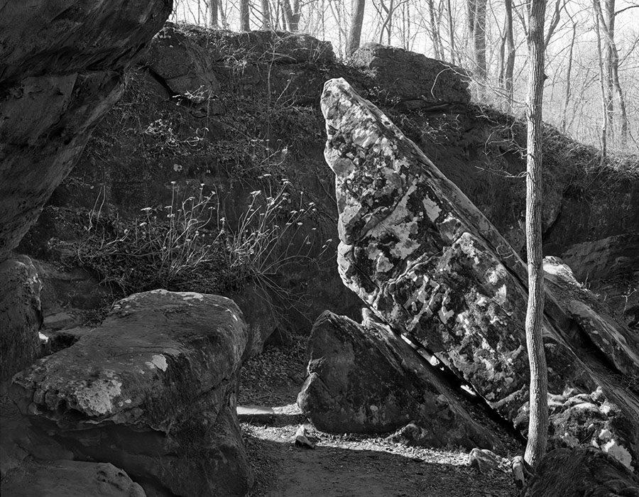 /product//morning-light-giant-city-state-park-makanda-illinois-1981/