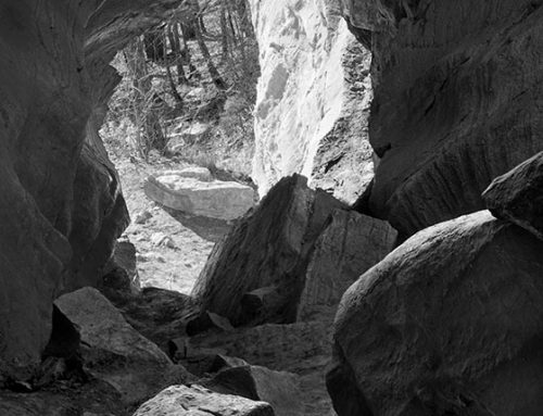 Limestone Cavern, Bluffs of the Mississippi Near Fults, Illinois, 1983