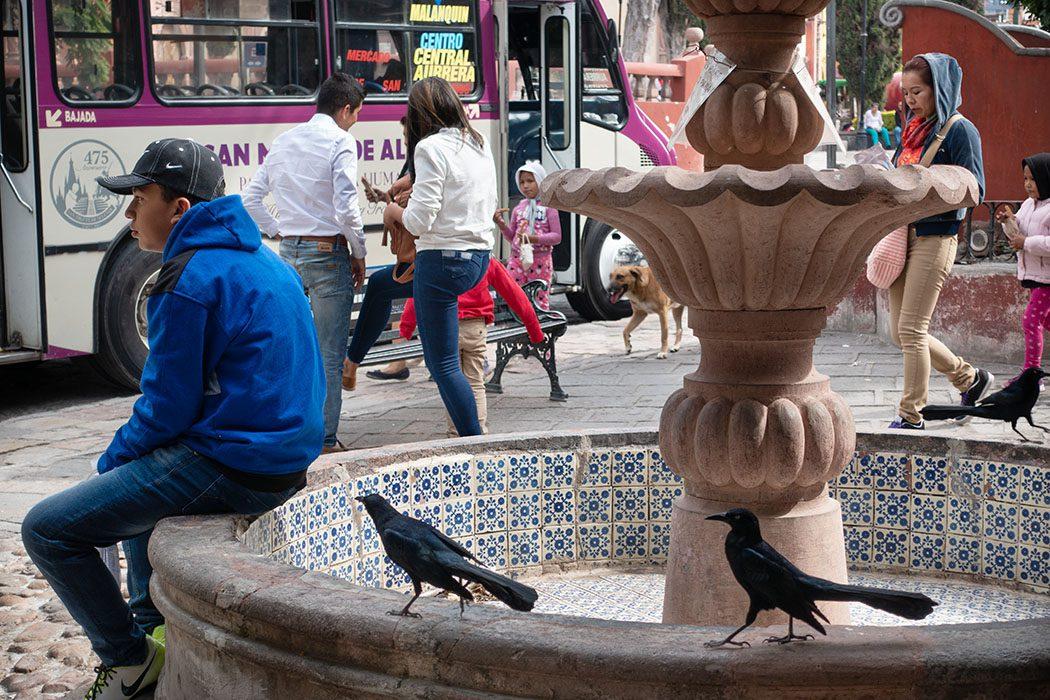 /product//street-scene-29-san-miguel-de-allende-mexico-2019/