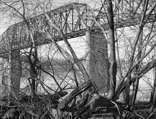 Chain of Rocks Bridge From Chouteau Island, Illinois #2, 2020