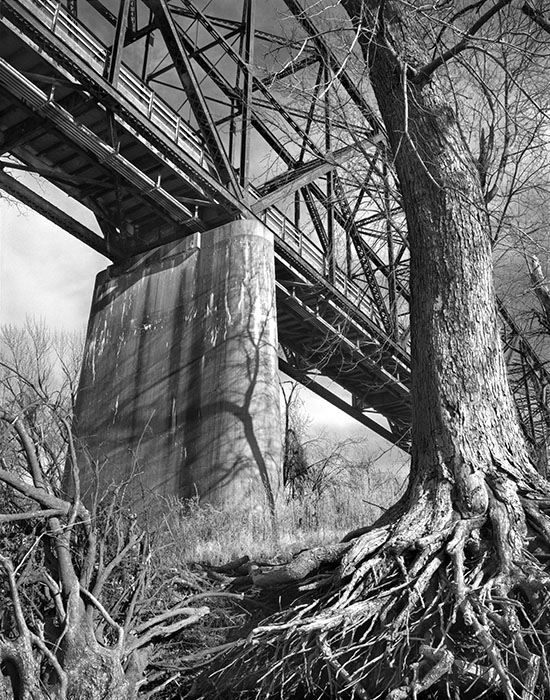 /product//chain-of-rocks-bridge-and-trees-from-the-bank-of-the-mississippi-river-winter-2020/