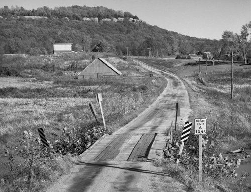 Country Road Near Cobden, Illinois, 1982