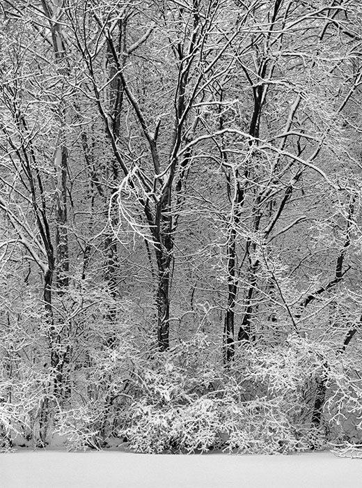 /product//fresh-snow-fairview-heights-illinois-2018/
