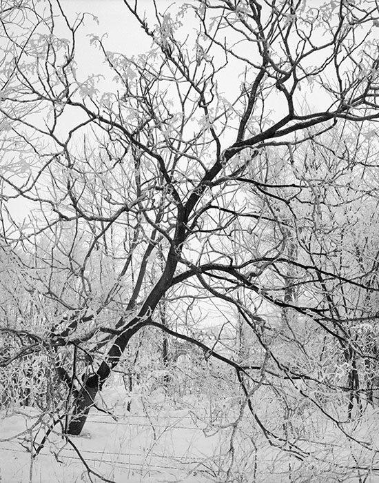 /product//fresh-snow-st-clair-county-illinois-1987/