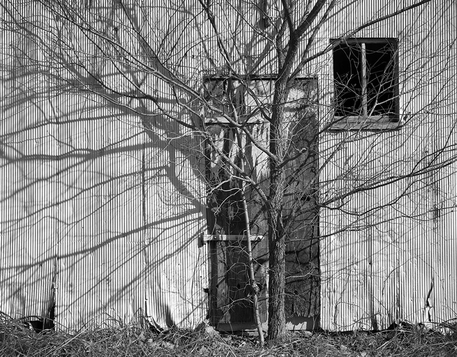 /product//tree-and-shadows-st-charles-county-missouri-1997/