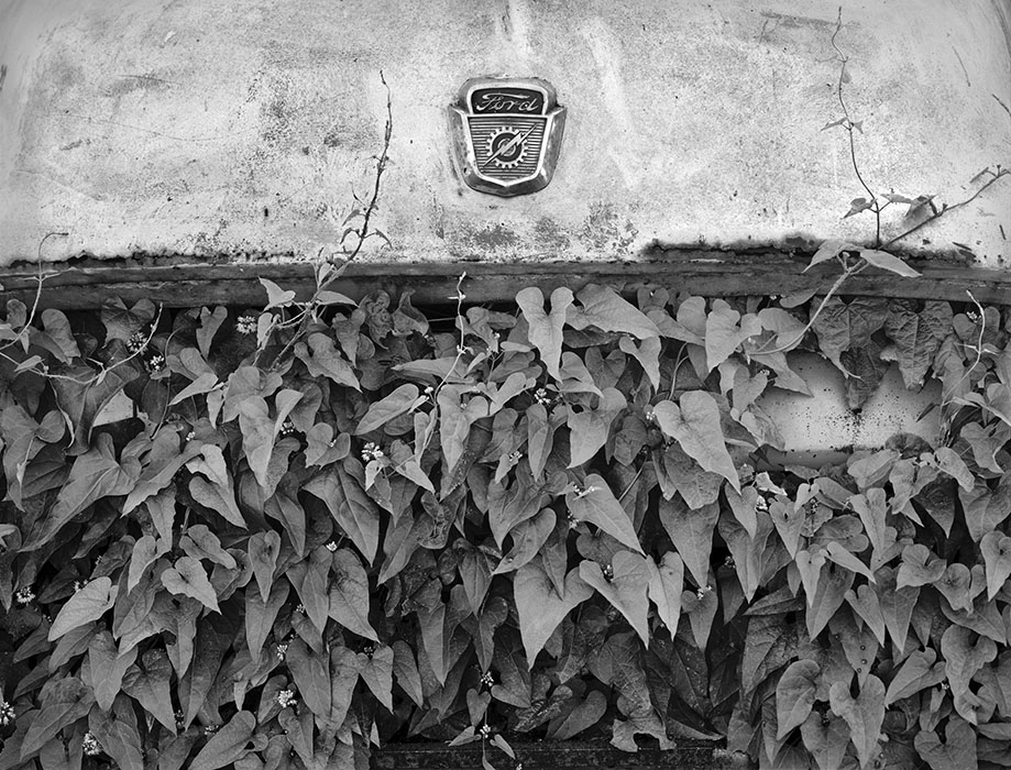 /product//ford-truck-ivy-ste-genevieve-missouri/