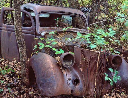 Car, Poison Ivy, St. Genevieve, Missouri