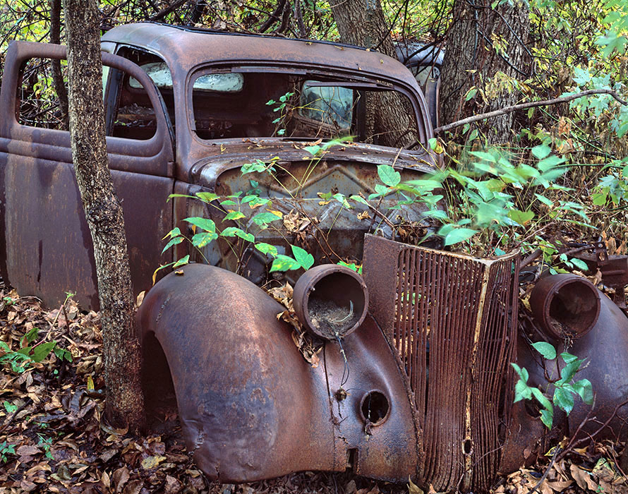 /product//car-poison-ivy-st-genevieve-missouri/