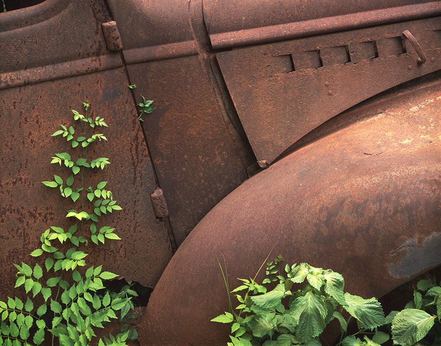 /product//old-car-leaves-4-st-genevieve-missouri/