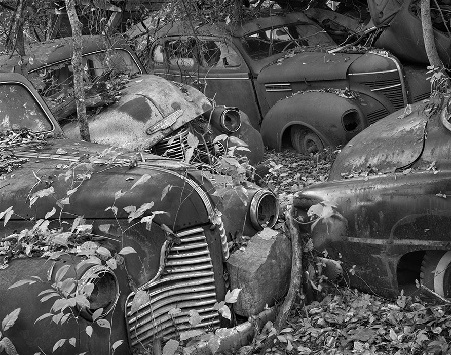 /product//old-cars-2-poison-ivy-ste-genevieve-missouri/
