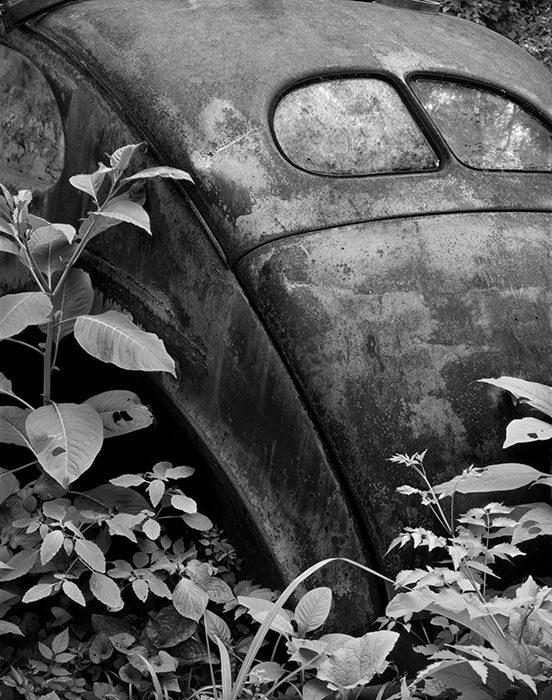 /product//two-windows-foliage-ste-genevieve-missouri/